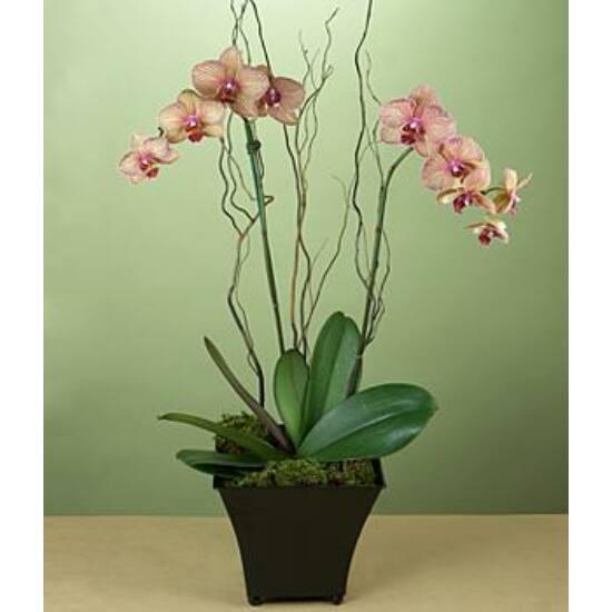 PixelHobby kulcstartó szett - I love you